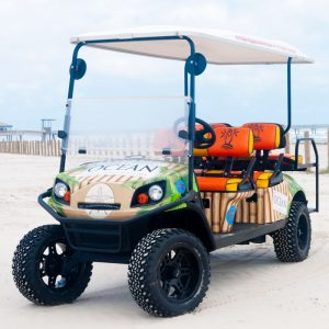 Mother Ocean cart at the beach.